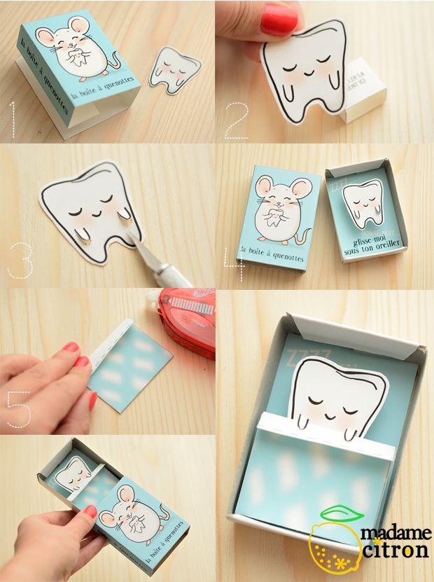 explications milk tooth box
