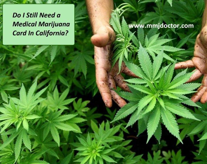 Do I Still Need a Medical Marijuana Card In California?