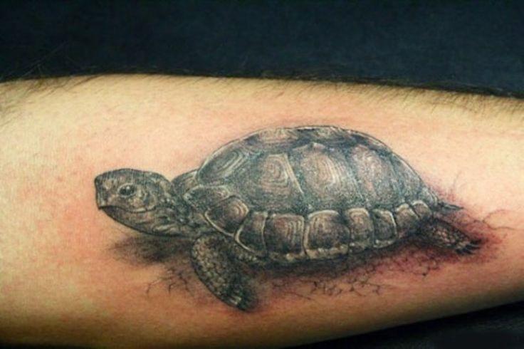Tortoise Tattoo Designs