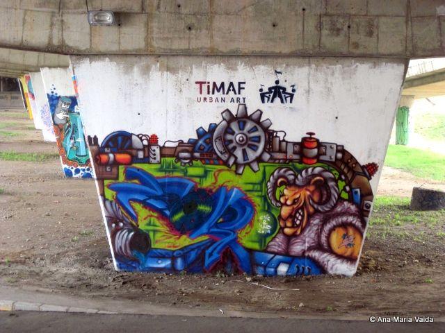 Street art Cluj sau cum poti sa coloezi cenusiul de sub un pod