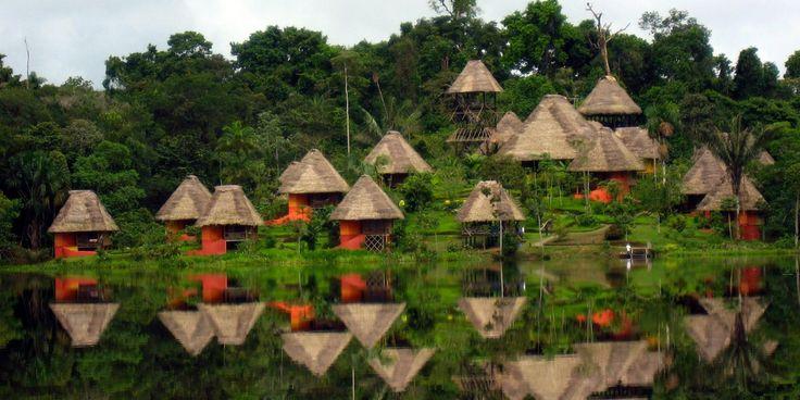 Amazon Rainforest | Exploring the Amazon Rainforest with ROW ...