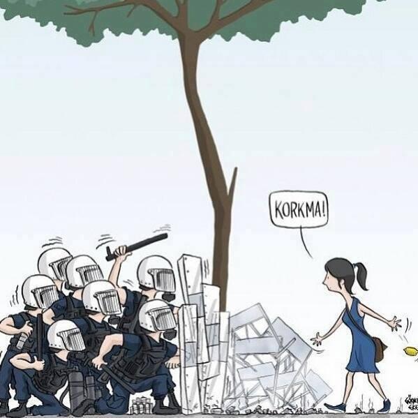 #korkma #occupygezi