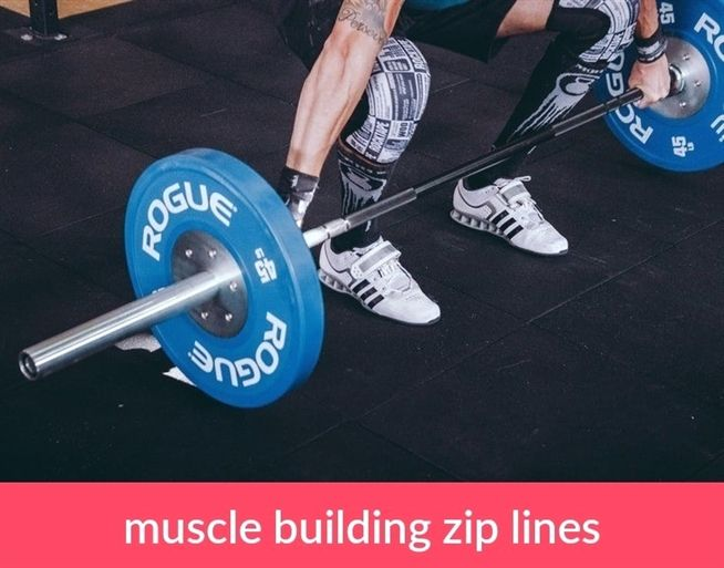 Madison : Best strength training programs reddit