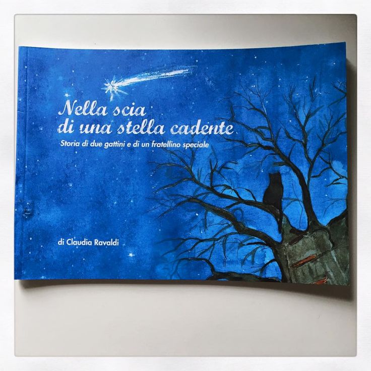 Nella scia di una stella cadente - a book for children on perinatal loss.