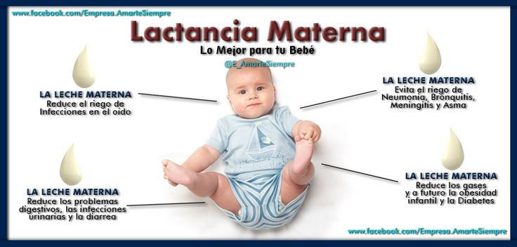17 best images about lactancia materna on pinterest not enough breastfeeding and babies - Alimentos para producir leche materna ...