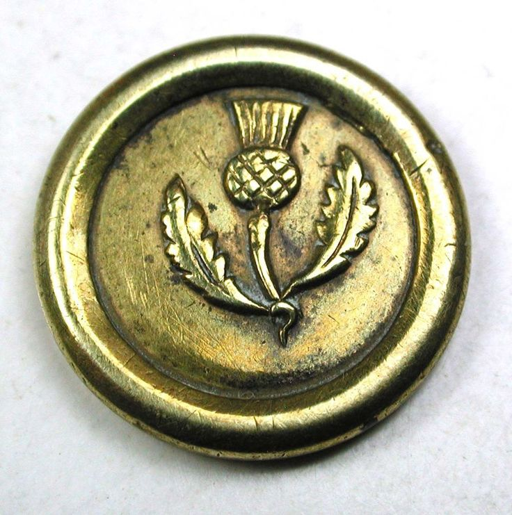 "Antique Jacksonian Brass Button Thistle Pictorial Design 9/16 "" Charming!"