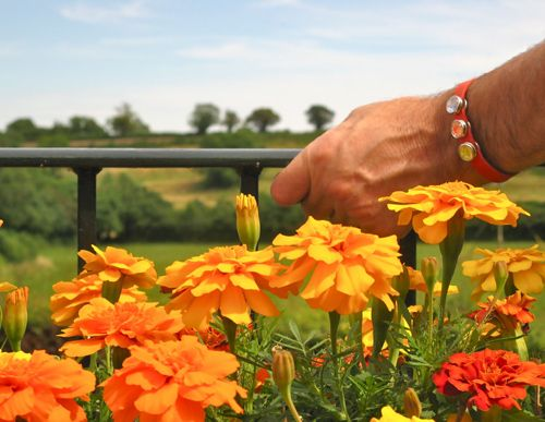 Orange leather bracelet - with health snaps