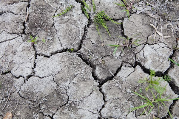 Ann-Kristina Al-Zalimi, kuiva, kuivuus, clay, savi, halkeilla, kesä, summer, dry, nature, luonto, kuiva maa,