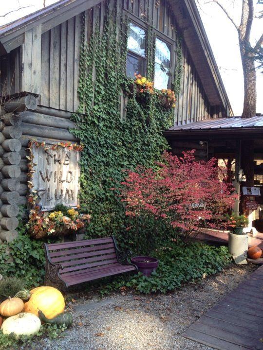 The Wild Plum Tea Room Menu