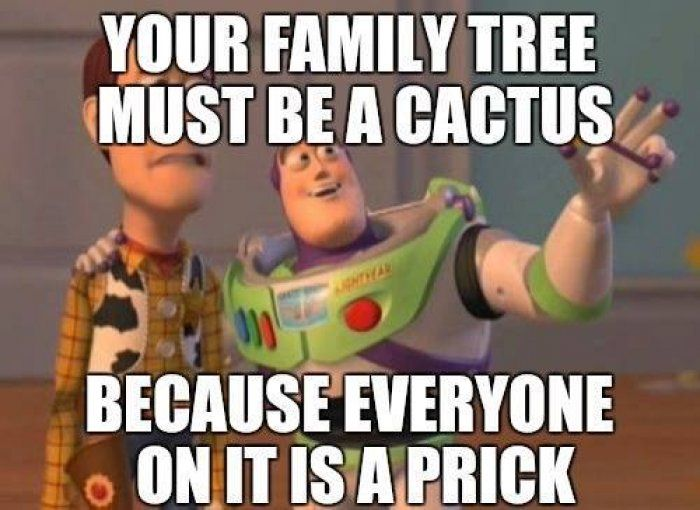 Your family tree must be a cactus – adult meme