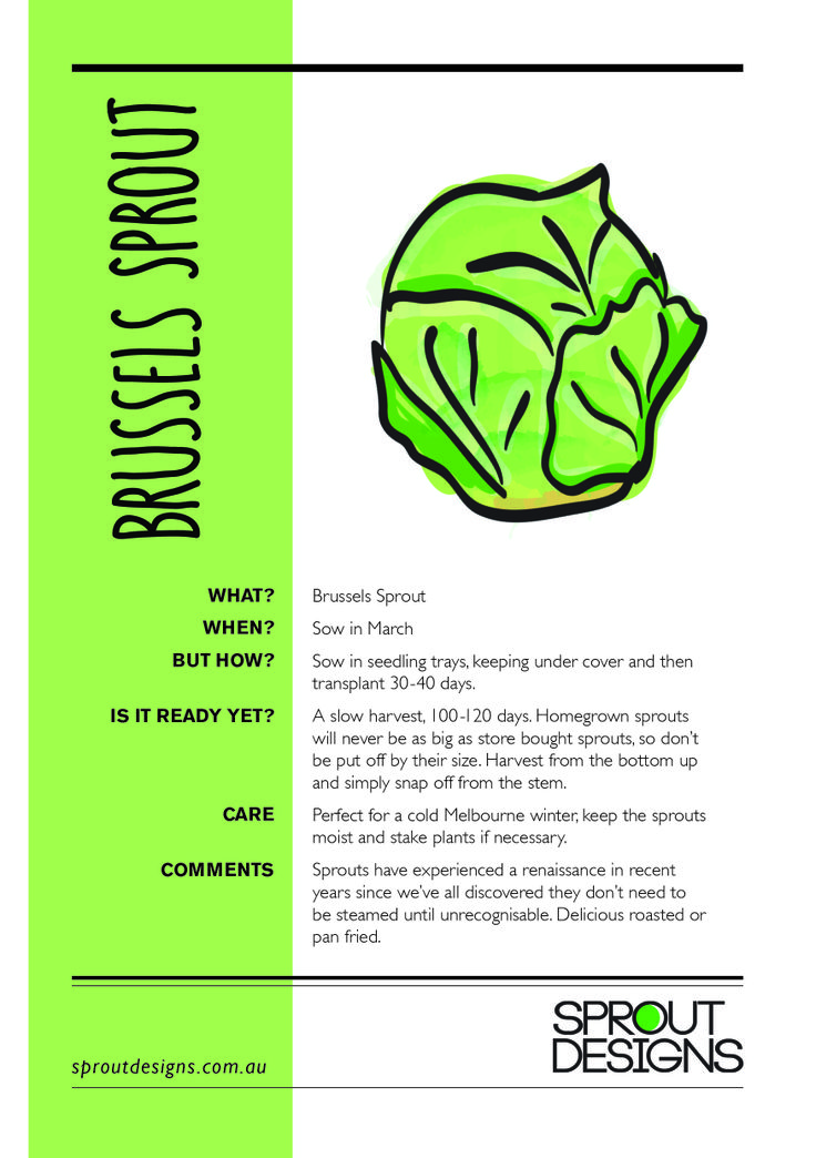 How to grow Brussels Sprouts!