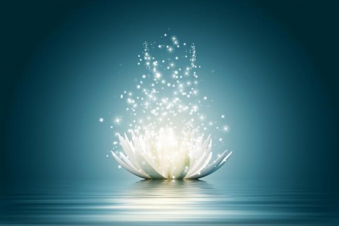 Il est nécessaire de prendre en considération que vous êtes une personne sensible aux énergies environnantes et de vous protéger des ondes négatives.