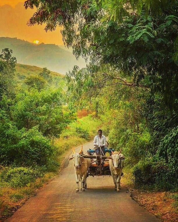 Photographer Tanushri Village Photography