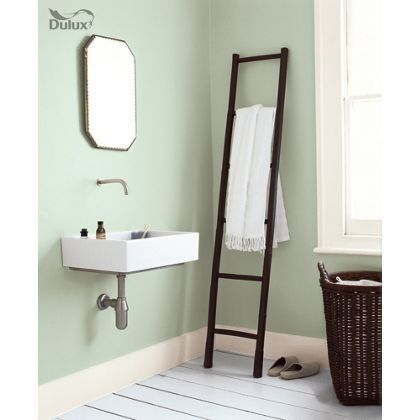 Dulux Bathroom Willow Tree - Soft Sheen Emulsion Paint - 2.5L at Homebase -- Be inspired and make your house a home. Buy now.