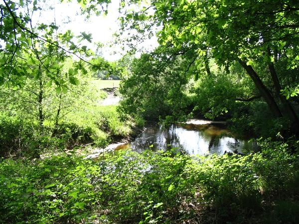 Meanderende riviertje de Dinkel in natuurgebied het Lutterzand, Twente Www.lutterzand.nl