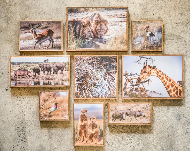 Safari wall - Printed on Stone and Timber panels by www.onstone.com.au
