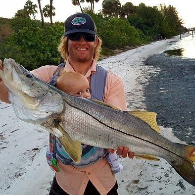 The recreational open season for snook starts Sept. 1 statewide.⠀ During the open season, the daily bag limit is one fish per person. There are size restrictions as well- are you ready? Click our bio link for more on the regulations.