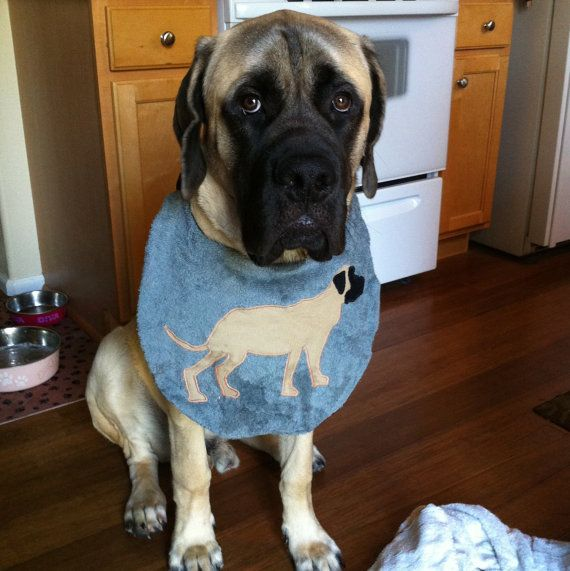 SALE- English Mastiff DROOL BIB Keep that Beautiful Coat Clean Made -tO-Order