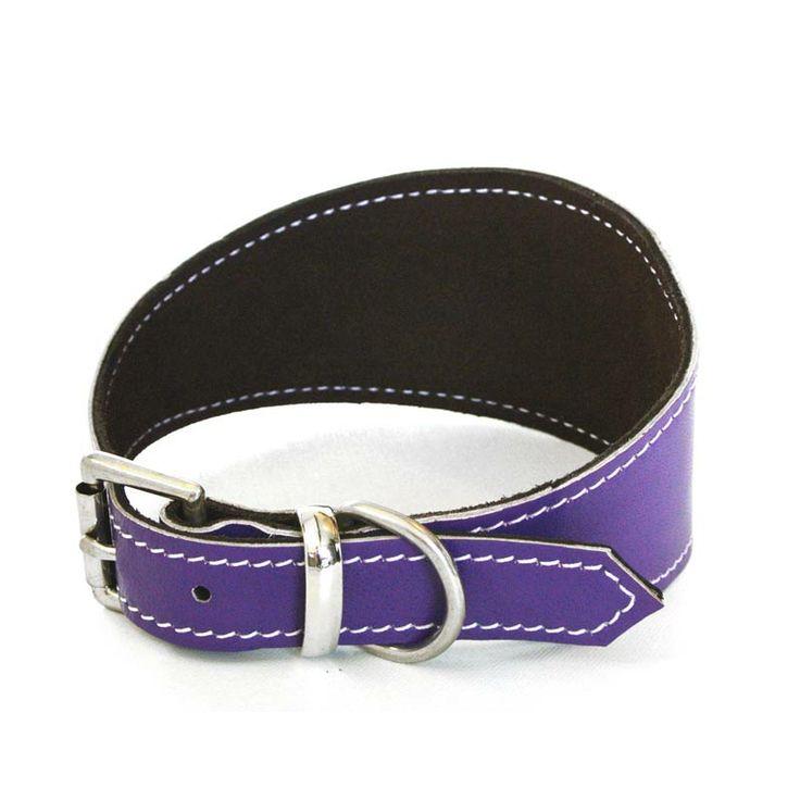 Purple Lurcher Collar #HugoandHennie
