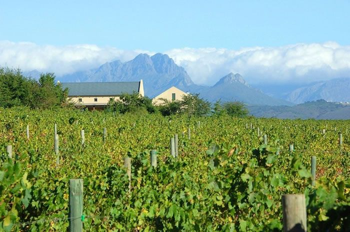 8 Best Places For Wine Tasting Around The World (shared via SlingPic)