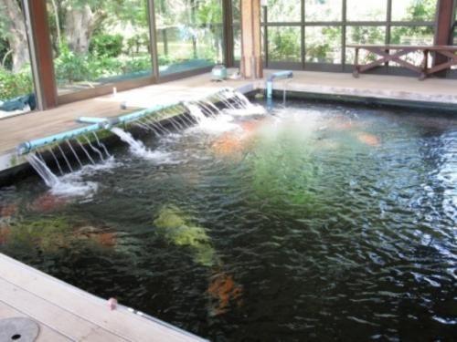 18 Best Piscicultura Acuicultura Aquaculture Images On Pinterest Aquarium Architecture