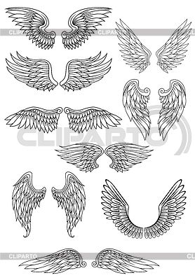 ангельские крылья - Поиск в Google