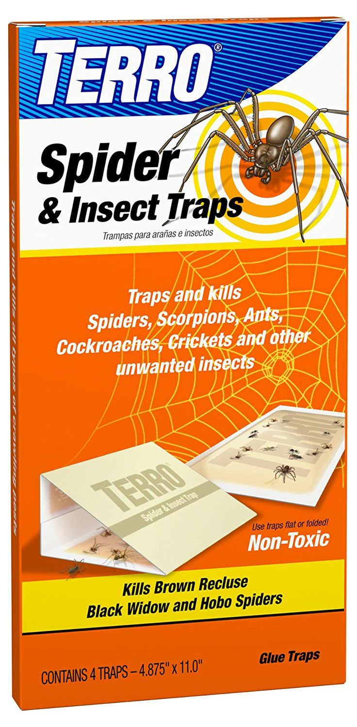 TERRO T3200 Spider & Insect Trap 4 traps (not available