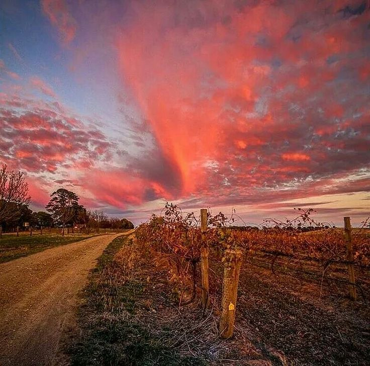 Clare valley South Australia | http://www.viewretreats.com/barossa-clare-valley-luxury-accommodation