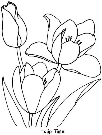 coloring bookanimal friends to color bonnie jones lbuns da web do picasa