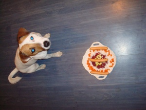 JRT / Rocco - I am three years and a cake