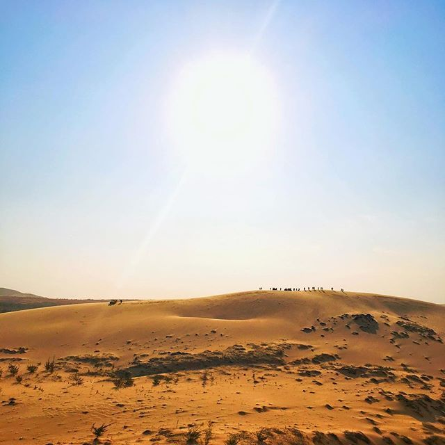Desert in Vietnam  Those dunes are huge and totally out of nowhere  . . . #whitesands #dunes #whitedunes #desert #muine #exploremuine #muinevietnam #vietnamtravel #vietnam #explorevietnam  #visitvietnam #vietnamtrip #ilovevietnam #travelvietnam #southasia #southeastasia #beautifulseasia #discover #wanderlust #travelpassion #worldphoto #travelers #backpacking #globetrotter #visionofpictures #snapseed #shotoniphone #iphonepics #iphonephotography #phonetography