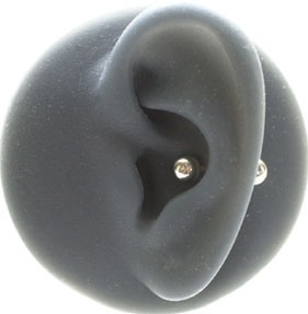 inner conch. im guna get a small one of these one day
