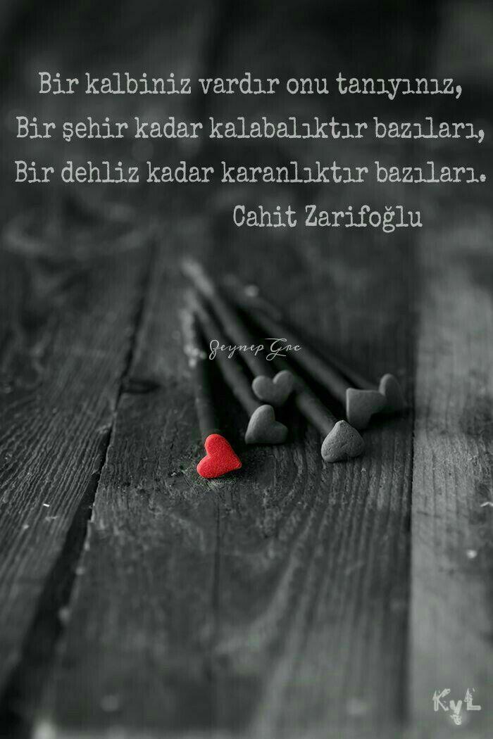 Bir kalbiniz vardır onu tanıyınız,/ Bir şehir kadar kalabalıktır bazıları,/ Bir dehliz kadar karanlıktır bazıları. - Cahit Zarifoğlu