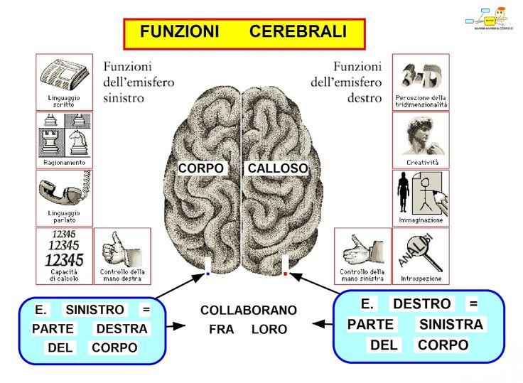 Mappa Concettuale: Funzioni cerebrali #appunti