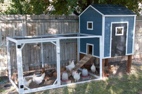 When this family spotted a coop they liked for $600, they decided to make their own version at a fraction of the cost. Its hinged door folds outward, making it easy to reach in and grab eggs.  Get the tutorial at Housewives of Riverton.