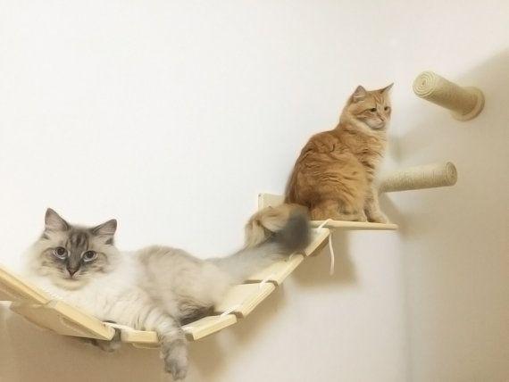 Het brugdek houten loopbrug-kat meubilair van AthletiCat op Etsy