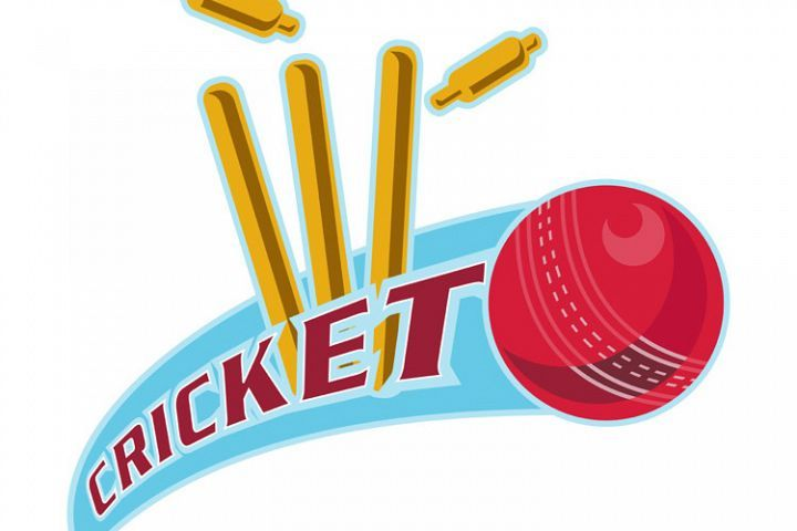 Cricket Sports Ball Wicket 244026 Illustrations Design Bundles Cricket Sports Cricket Logo Sports Balls