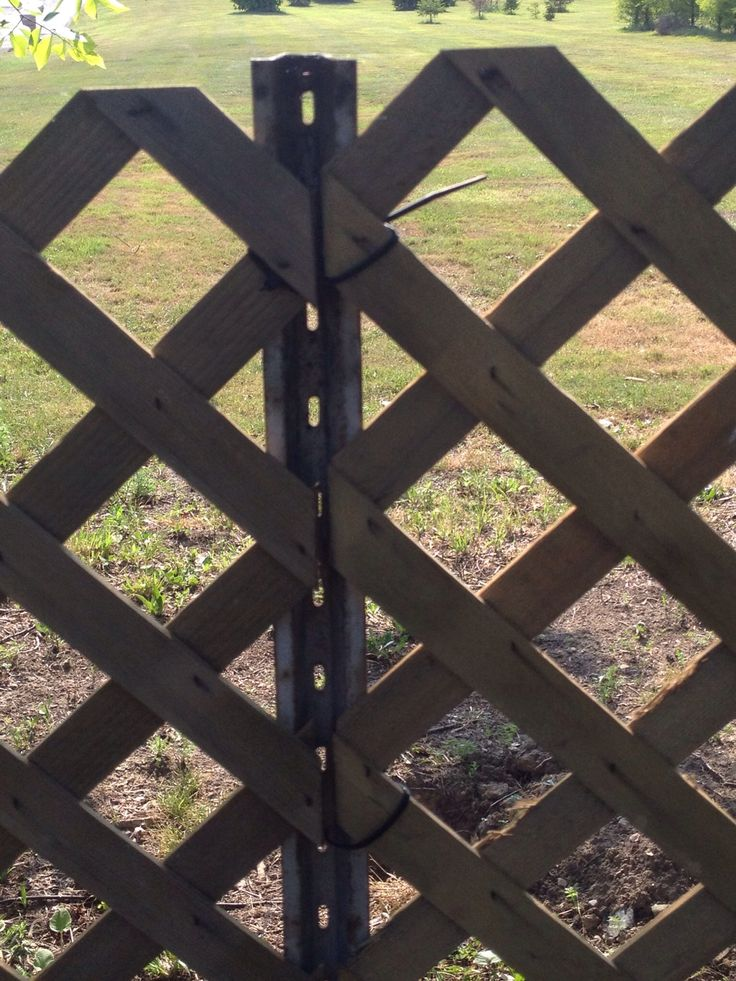 How to Install a Fence Super Fast With Minimal Effort  Recipe  For the Garden  Pinterest