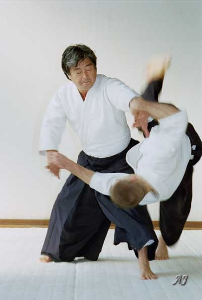 My all time Aikido inspiration...beauty, power and dynamics!