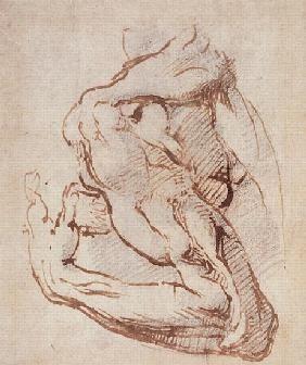 Michelangelo (Buonarroti) - Study of an Arm Inv.1859/5/14/819 (W.49)