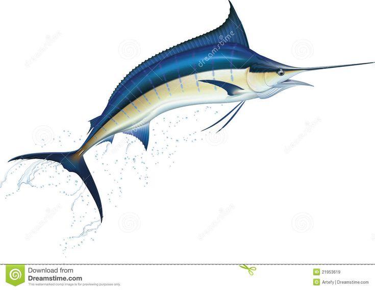 Голубой Марлин Лицензии Роялти-Фри Стоковые Изображения - Изображение: 21953619
