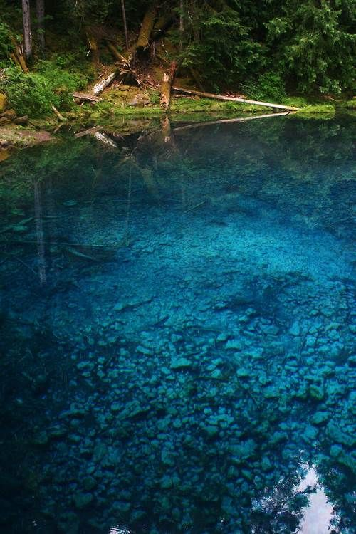 The 25+ best Tamolitch pool ideas on Pinterest Blue pool oregon