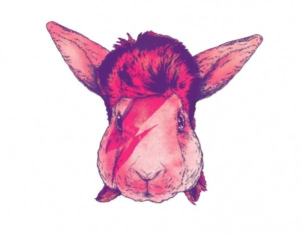 Bowie bunny Fabian Ciarolo