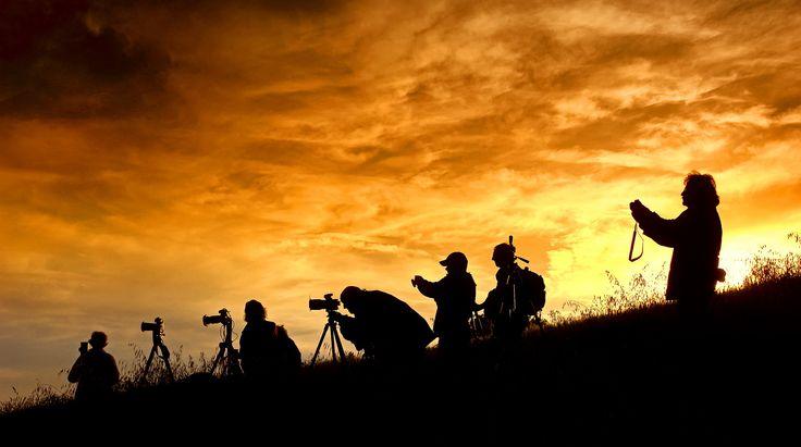 "Helmut Plamper - ""Fotografieren in der Toskana"".  Hier gehts zur Gesamtübersicht: http://pxm.li/6ryCDE  #Sommer #Foto #Toskana"