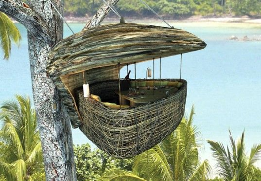 soneva kiri eco resort, thailand.  dine in a tree pod, 16 feet off the ground. i'm not sure how you get into this pod, but waiters bring food and drinks via a zip line.