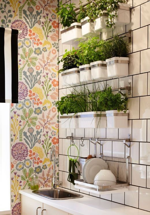 Ideas for a Stylish Indoor Kitchen Herb Garden | Apartment Therapy - Growing herbs indoors isn't just a dream, it's a reality you can get to work on today! Using systems such as the GRUNDTAL series from Ikea you can hang planted herbs on a well lit wall and have fresh herbs all year long!