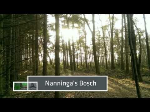 De mooiste wandeling van Groningen - YouTube - Een prachtig filmverslag van de Oude paden wandelroute bij Niebert-Jonkersvaart-Nuis door Wanda Catsman. Haar verslag gaat over deze route http://wandelenrondroden.nl/lange-routes-11-20km/wandelroutes/11-20km/oude-paden-route-niebert-jonkersvaart-nuis-17-5-km