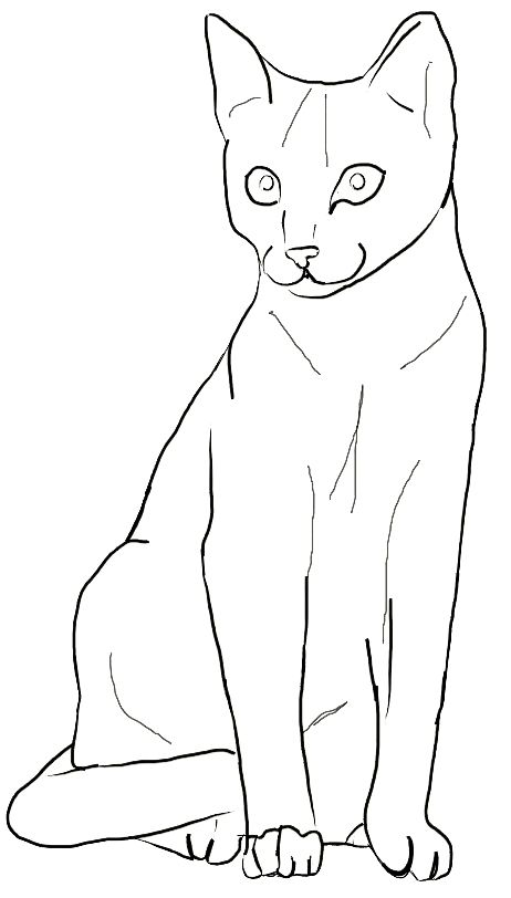 18schoeneausmalbilderkatzedekokingcom  simple cat