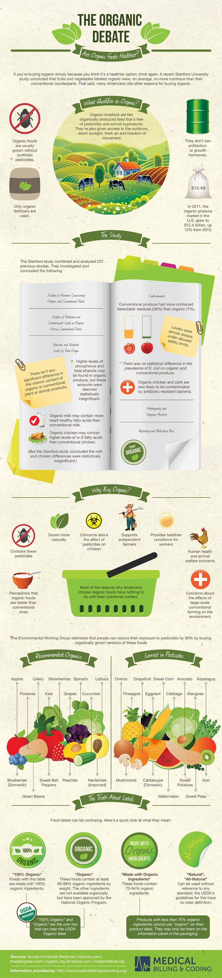 Eco-food / comida ecológica