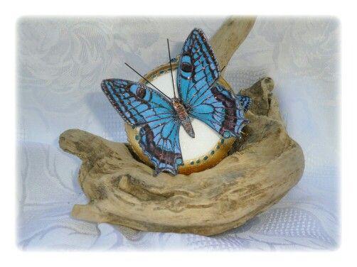 Med. Con farfalla grande turchese
